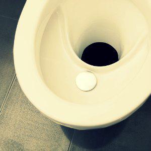 Photo Toilette sèche écologique à séparation