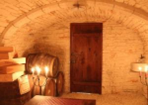 Photo caves voutées à l'ancienne pierres apparentes - préfabriquées